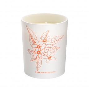 Phyto-Aromatic Candle Atlas